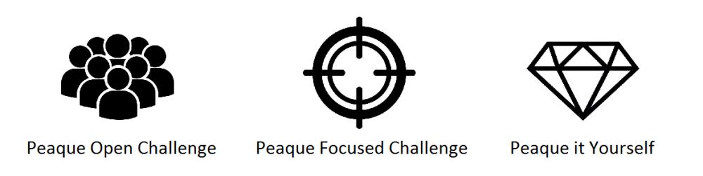 peaque-challenges